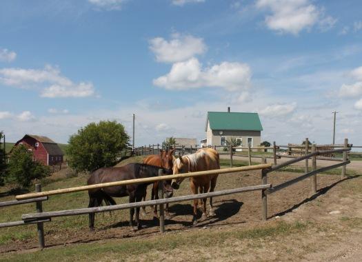 homesteadgood